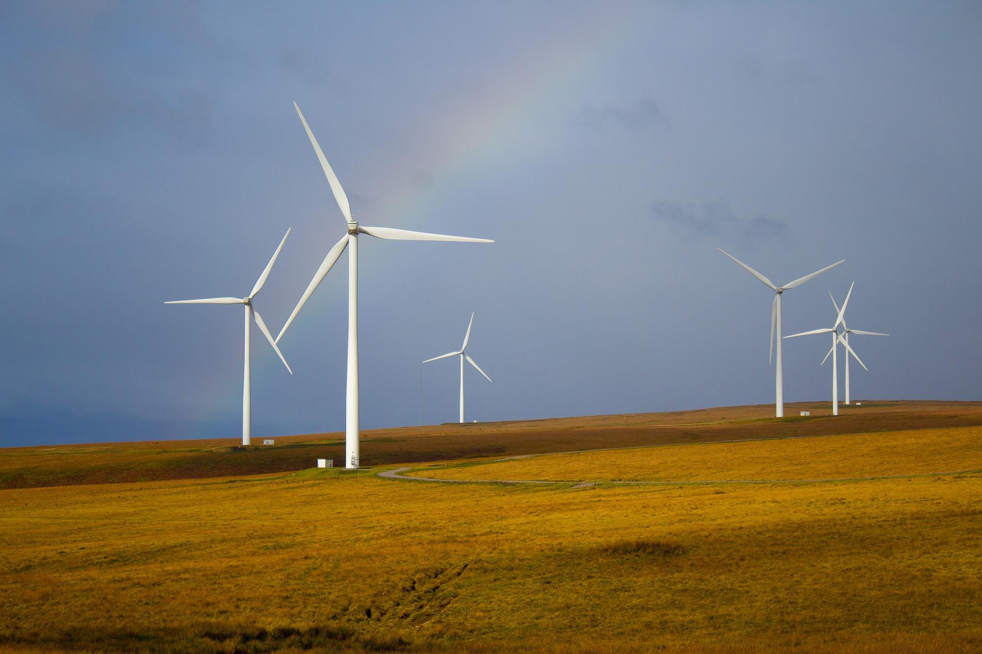 GYCAF windmills